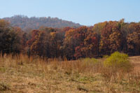 The farm is surrounded by great fall color