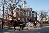 The carriage ride was a great addition to the festive atmosphere