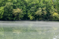 The Cumberland River at 9:51am, the fog is still lifting.