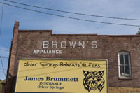 Mr. Brown has diversified and is now into advertising, though be it for a good cause