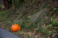 Appearently Pumpkins are also welome on the Greenway