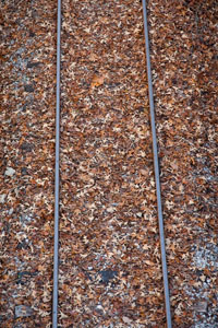 There's just something about old railroad tracks that makes me think of times gone by